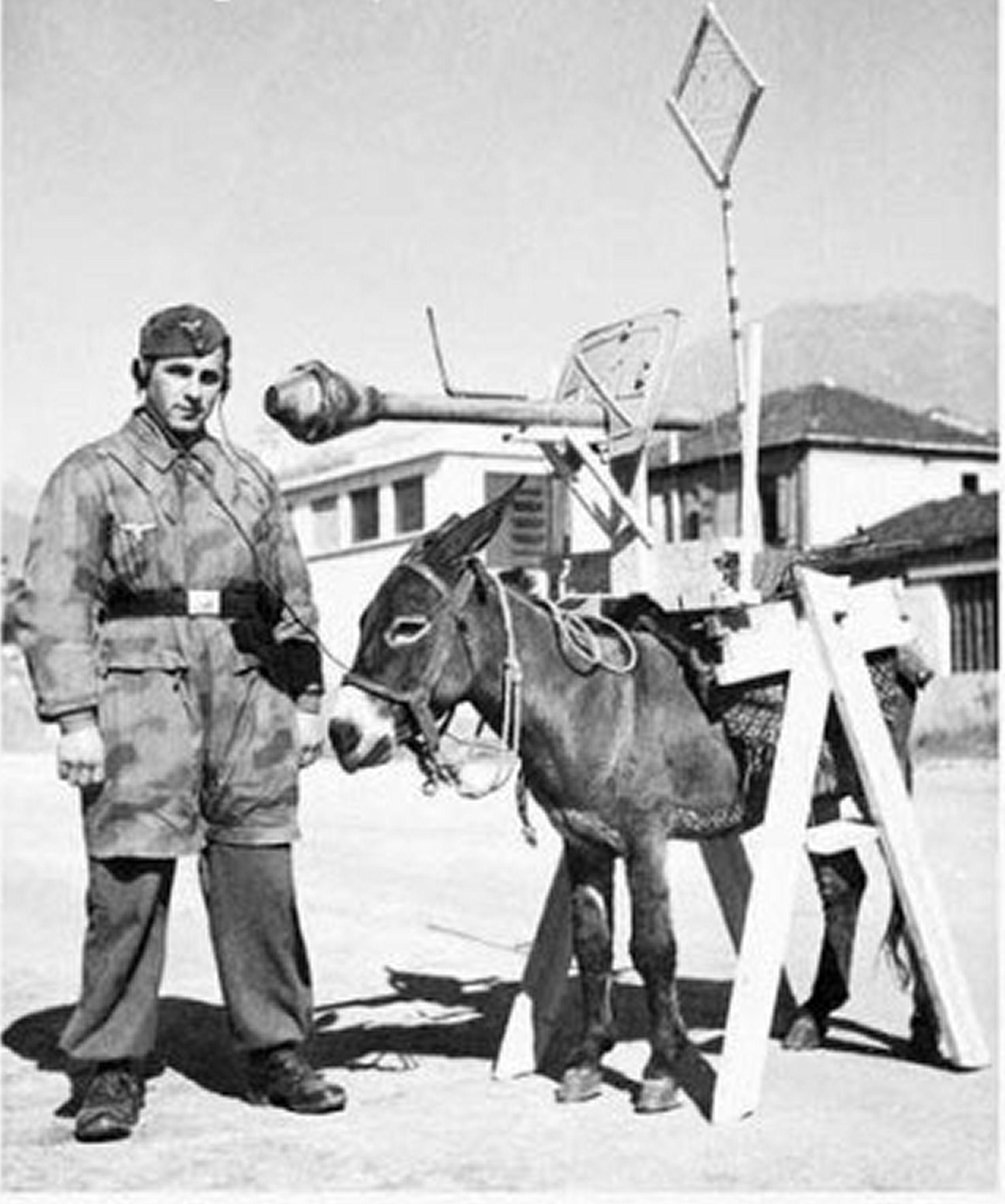 Тайное оружие второй мировой войны 18 фотография